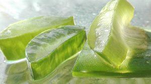 I benefici del Gel Aloe Snep per pelle e capelli